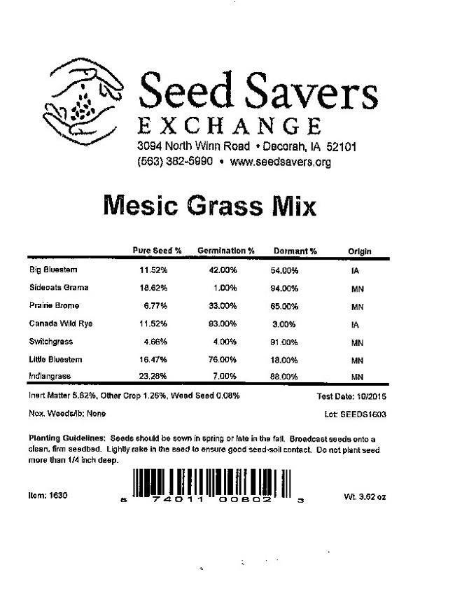 Mesic grass mix
